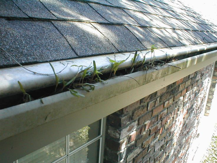 Types of gutter guards find the best gutter guards for your home screens solutioingenieria Image collections
